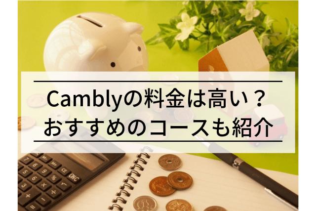【実践者が語る】Camblyの料金は高い?かかる費用を徹底解説!